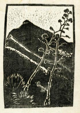 Untitled (mountain with desert plants)